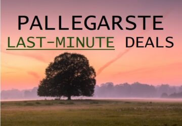 Last-minute deals!